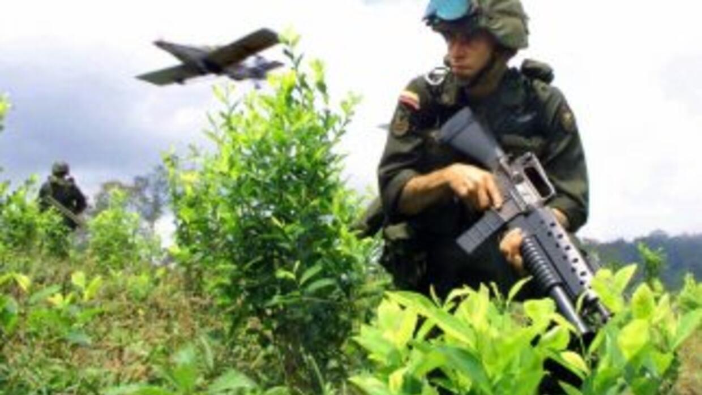 Un soldado colombiano avanza en un cultivo de coca, mientras un avión ro...