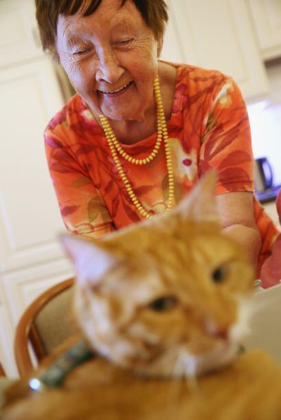 Eva indica que los gatos de terapia como Mogli deben ser amigable y tran...
