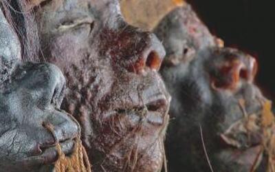 Momias, trenes y la Amazonia, los temas de las exhibiciones del Museo de...