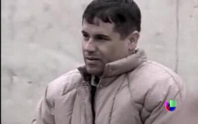 """Desde muy temprana edad """"El Chapo"""" Guzmán ayudaba  a su padre a cosechar..."""