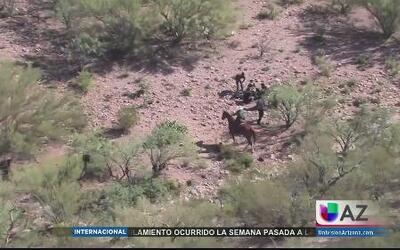 Mano dura con los coyotes