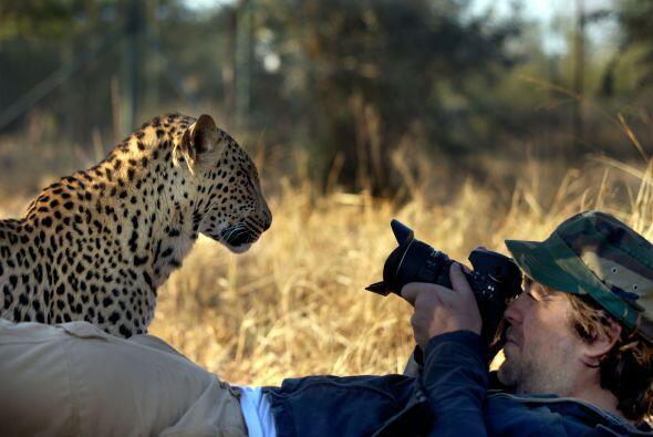 Las fotografías tuvieron lugar en la Reserva Tshukudu, en la prov...