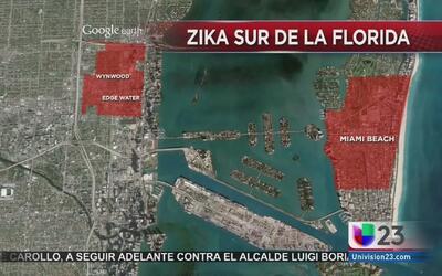 El drama del contagio y la lucha política debido al virus del zika crece...