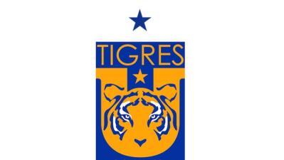 Tigres Campeón