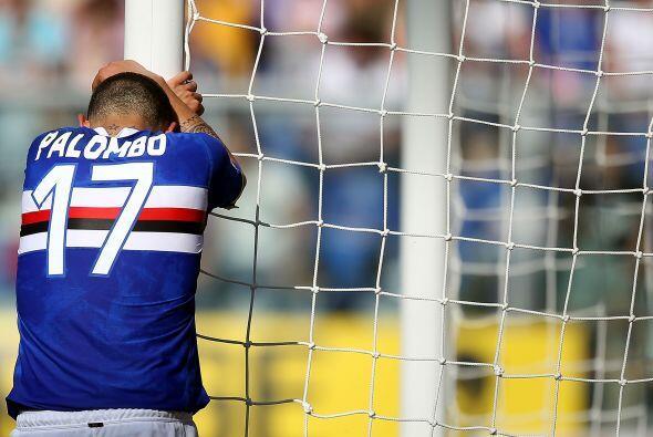 No se rían de Angelo Palombo, si ustedes también se la pasaran perdiendo...