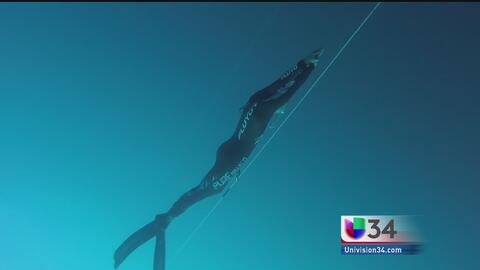 Comparten la pasión del freediving