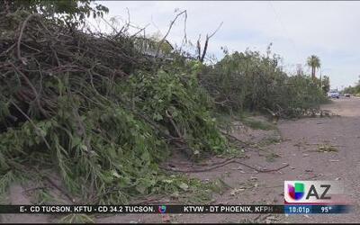 Cómo reducir gastos de daños por tormenta