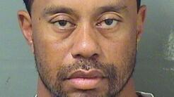Tiger Woods fue arrestado por la policía de Palm Beach, Florida, por man...
