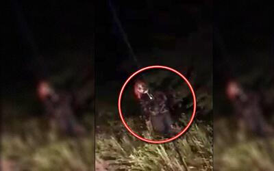 Payaso supuestamente visto en Ocala, Florida.