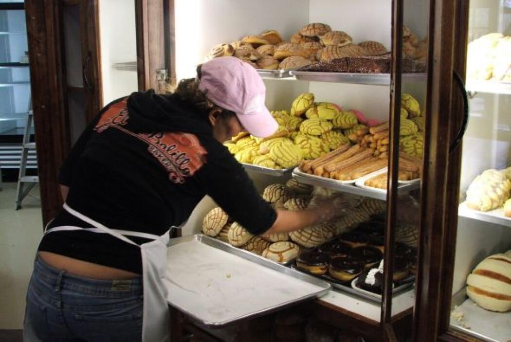 Y para muestra bastan estas conchas, empanadas, rosquillas y churros.
