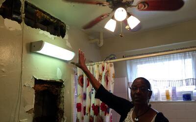 Yolanda Donato asegura que NYCHA no atendió sus quejas de moho