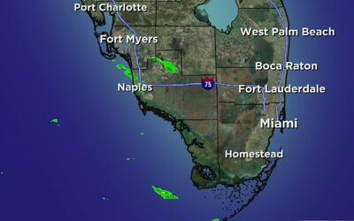 Calor en Miami, el pronóstico para la noche de este 5 de diciembre