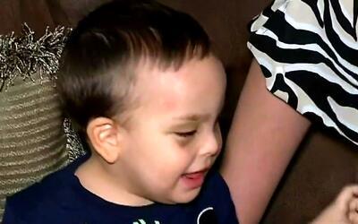 Niño que cayó del cuarto piso de un edificio en Hialeah se recupera en s...