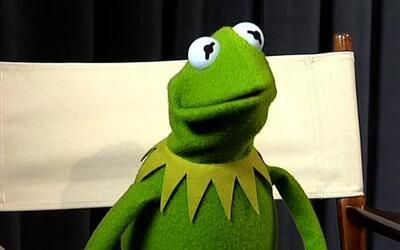 La Rana Kermit soltó exclusivas declaraciones en Despierta América