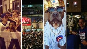 Fanáticos de los Cubs demostraron su pasión por el equipo y compartieron...
