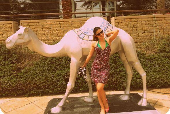 Uno de los mejores momentos fue montar en camello, claro no este de ador...