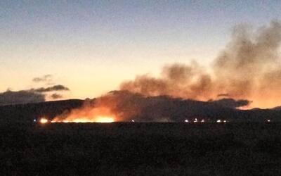 Avión se desploma en Livermore
