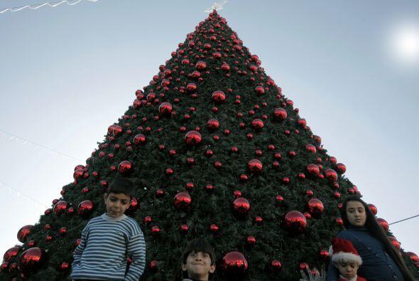 Estamos de acuerdo en que un Árbol de Navidad no puede serlo sin...