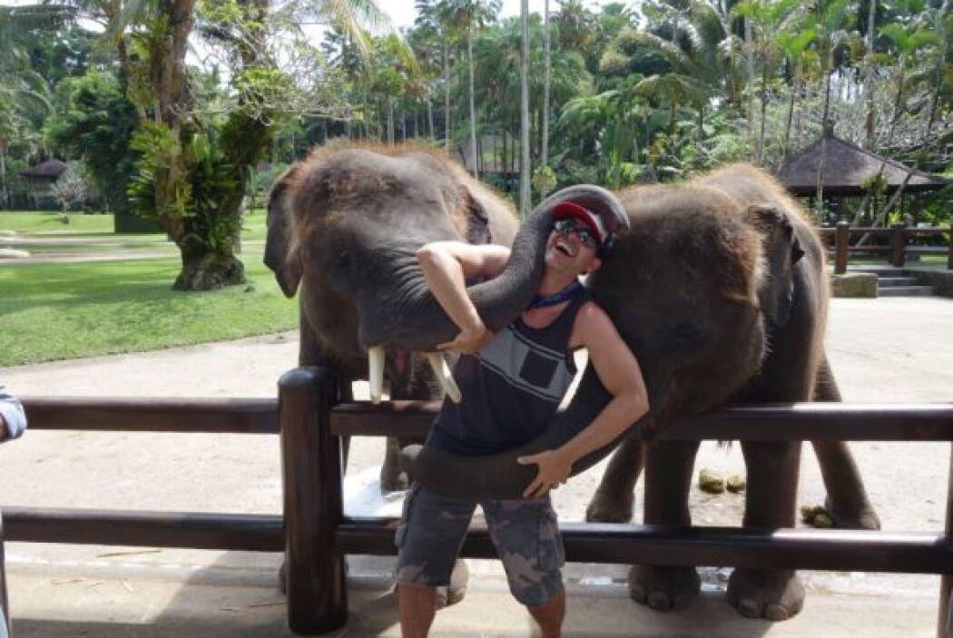Carlos estuvo por un rato jugando con los elefantes y estaba de lo más d...