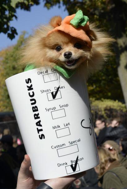 Para los amantes del café, qué tal un vaso de 'Pumpkin Spice Latte',  ún...
