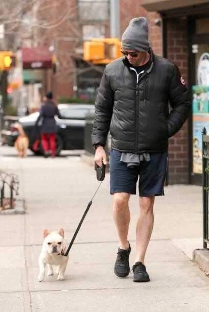 Muy atento a sus pasos, Jackman caminó sin prisa para que la perrita dis...