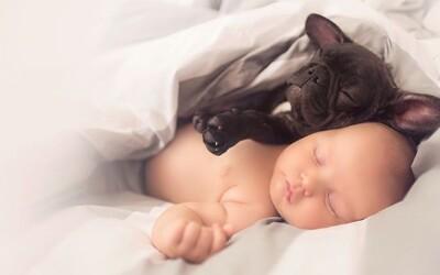 Perrito cree que es hermano de un bebé