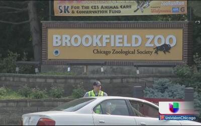 Fuga de gas complica acceso a Brookfield Zoo