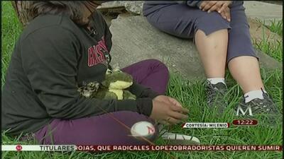 Grupo armado atacó y violó a adolescentes de campamento juvenil en México