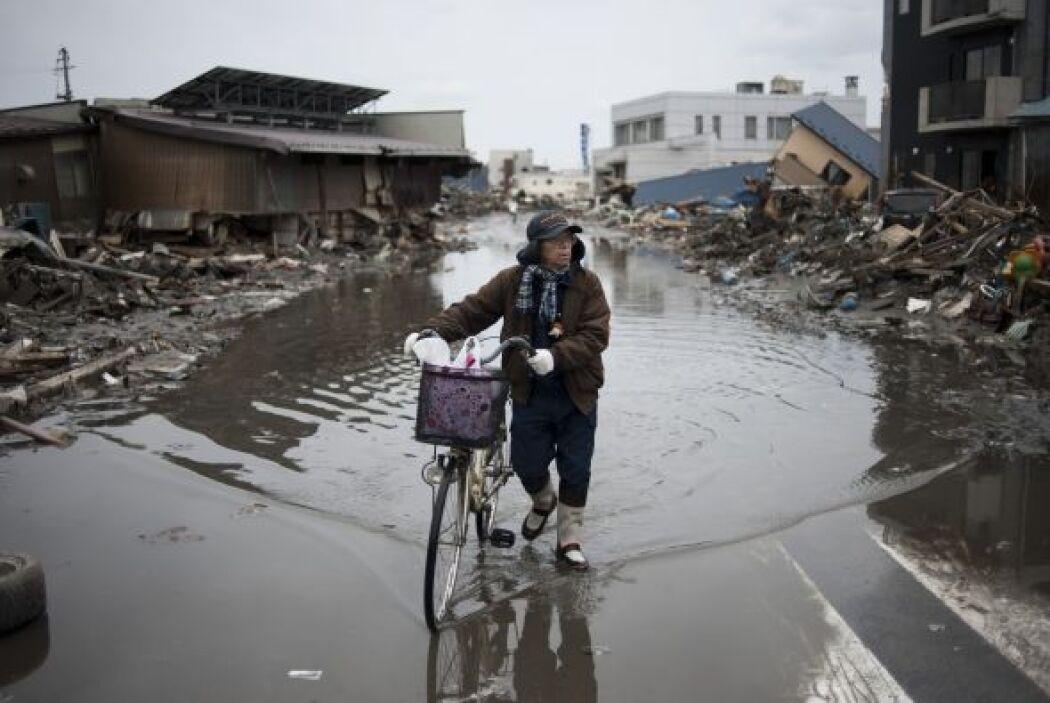 Las autoridades japonesas reportaron el fin de semana progresos en las a...