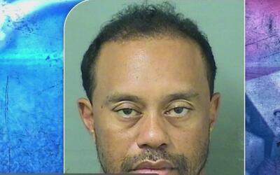 Tiger Woods fue detenido al ser sorprendido conduciendo en un presunto e...