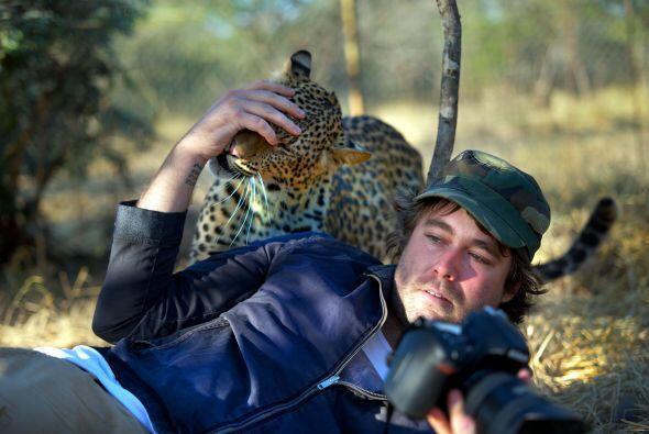 Al retratista sudafricano se le permitió acercarse para tomar un...