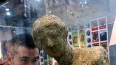 Una réplica de la Venus de Milo hecha de excrementos de panda fue adquir...