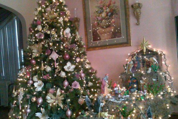 Chayo Laros envió una foto de su árbol de navidad y de su nacimiento lis...