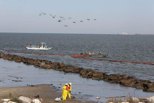 Continúan las labores de limpieza tras derrame de petróleo