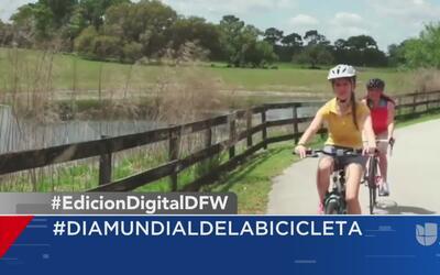 Día mundial de la bicicleta y otras tendencias en la red