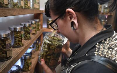 Dispensario de marihuana en Oregon, donde se legalizó el cannabis...