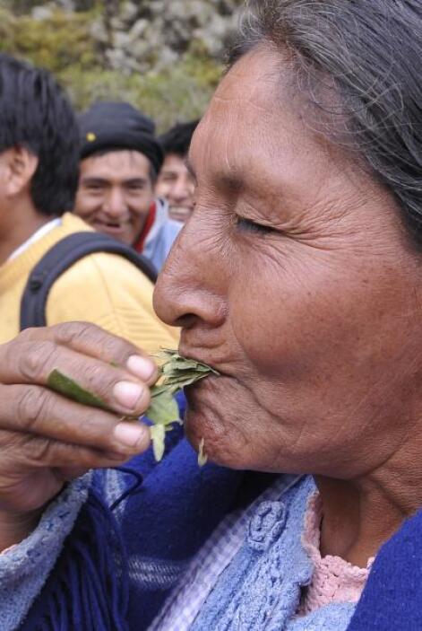 La protesta ocupa la carretera entre La Paz y el valle de los Yungas que...