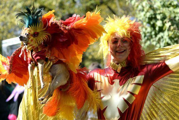 Si se trata de imprimirle el espíritu de carnaval al traje, algo...