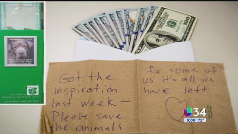Solo en Los Ángeles: donaciones misteriosas y osos estresados