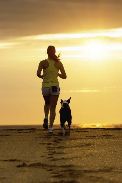 El Canicross es una excelente opción como forma para adiestrar a tu perr...