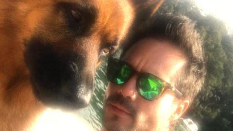 Conoce a las mascotas de los famosos de televisión más con...