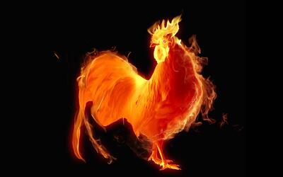 Año del Gallo de Fuego