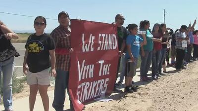 Más 250 inmigrantes detenidos en huelga de hambre en Arizona