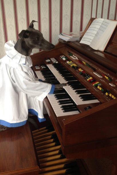 Rupert adora tocar los instrumentos.