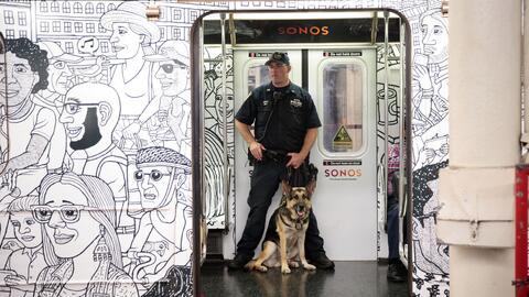 Oficiales junto a miembros de la unidad canina ofrecen vigilancia dentro...