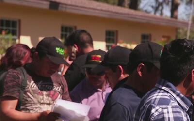 Temor e incertidumbre entre los agricultores hispanos que trabajan en Im...