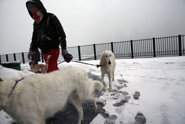 La gente camina junto con sus perros en la nieve en el barrio de Brookly...