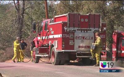 Bomberos combaten incendio en el Dorado