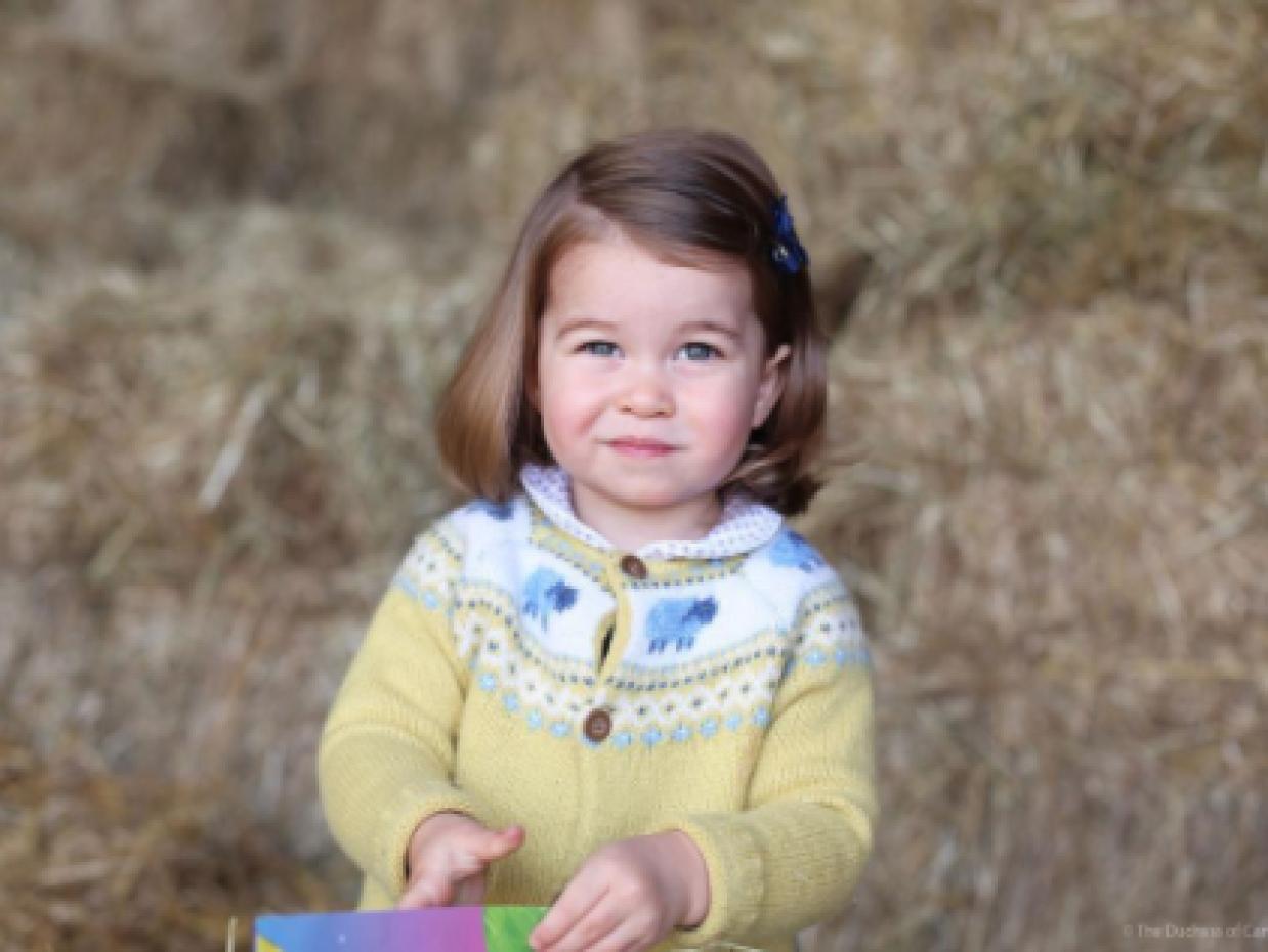 La princesa Charlotte, nieta de la fenecida Lady Diana, cumple dos a&nti...