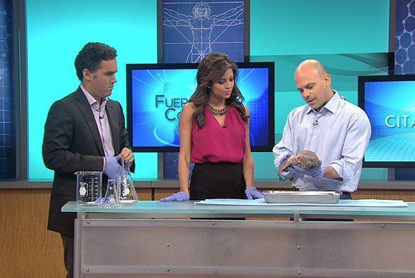 Por su parte el doctor Juan Rivera mostró los terribles efectos del alco...